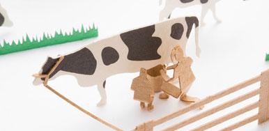 北海道くらし百貨店「北海道の風景 牛がいっぱい編」