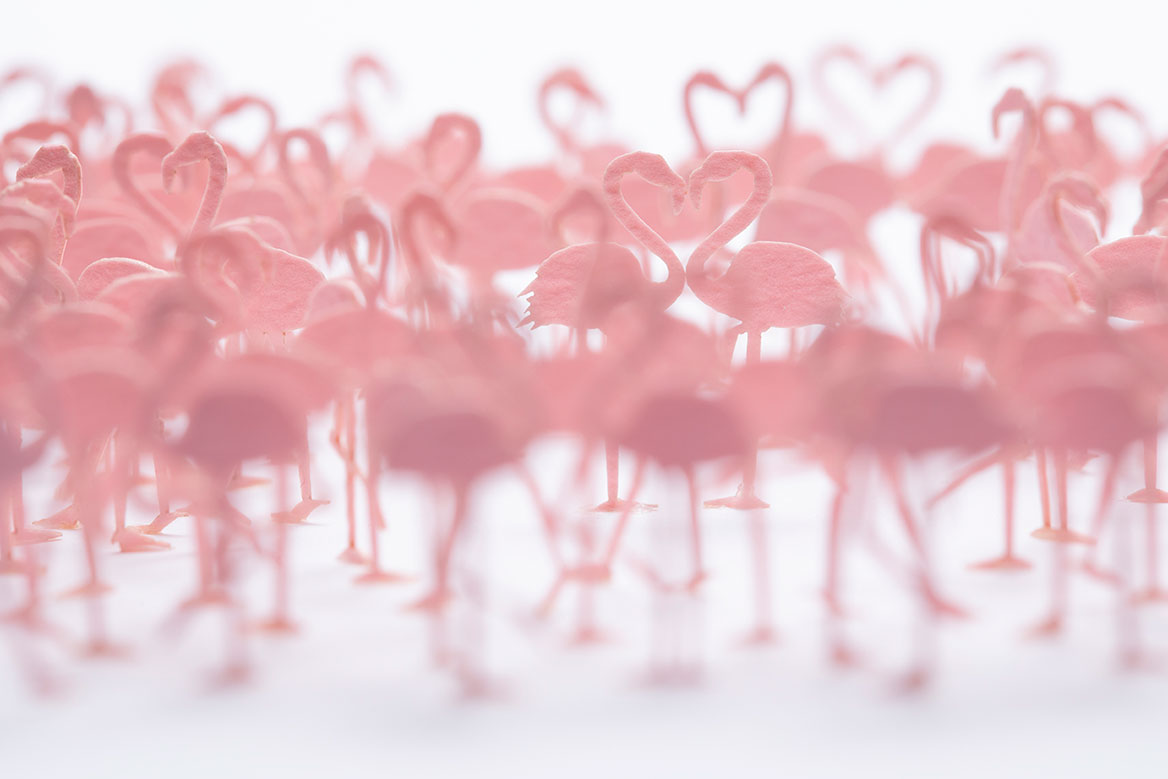 1/100 ARCHITECTURAL MODEL ACCESSORIES SERIES No.91 Flamingos