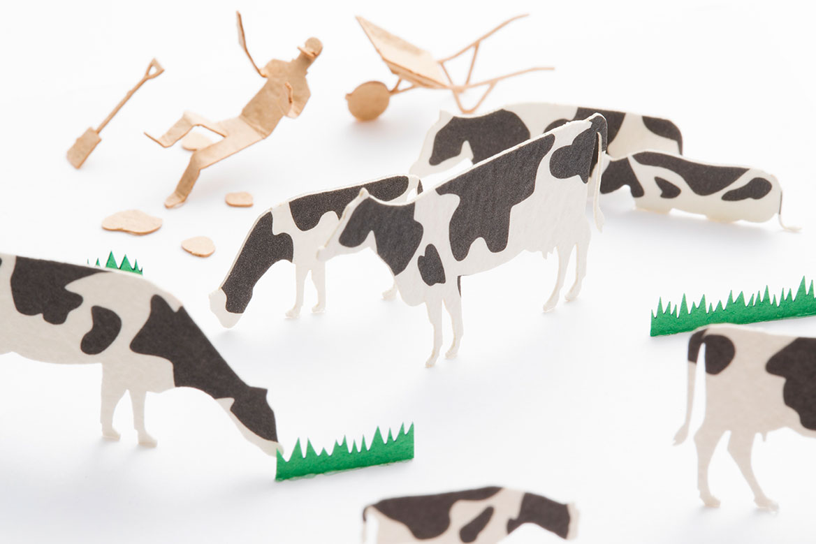 1/100 ARCHITECTURAL MODEL ACCESSORIES SERIES Special edition THE KURASHI STORE OF HOKKAIDO -HOKKAIDO : Cows, cows, and more cows-